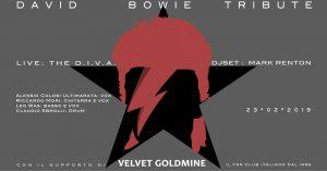 Bowie appuntamenti febbraio 2019